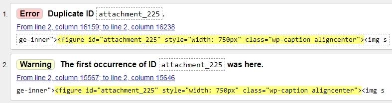 validation-duplicate-id-error